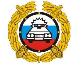 Правила и порядок замены водительских прав